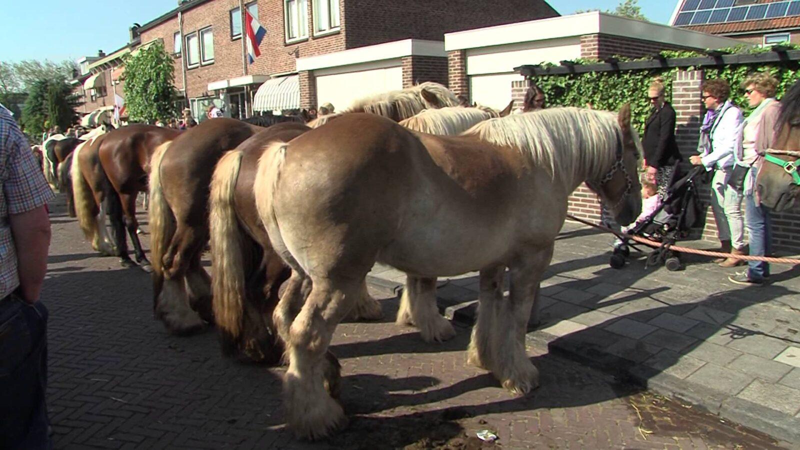 Hollandse Avond in Het Dorpshuis Valkenburg | RTV Katwijk